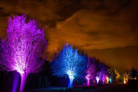 tuin aanlichten1